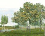 Yzerboomgaard 04